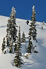 NX2_2010-01-27_428_Highland PowderDSC_6468