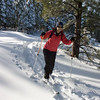 TNF cross country skiing