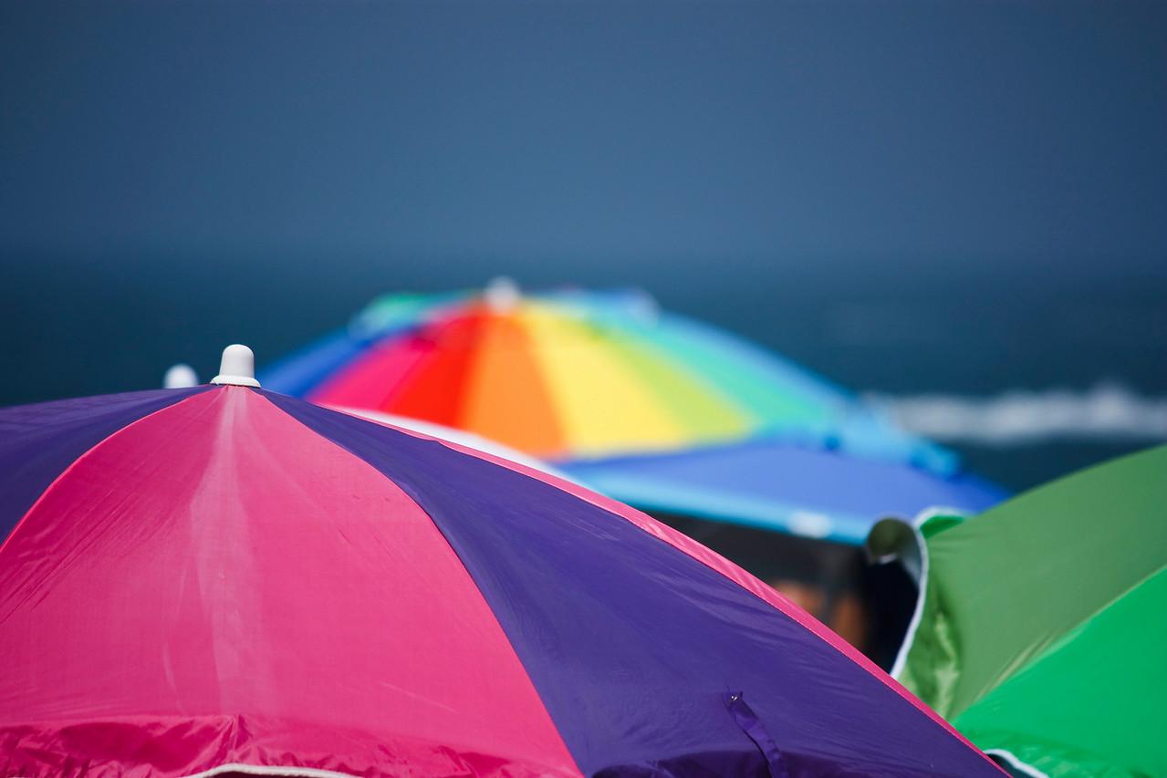 A sea of umbrellas.