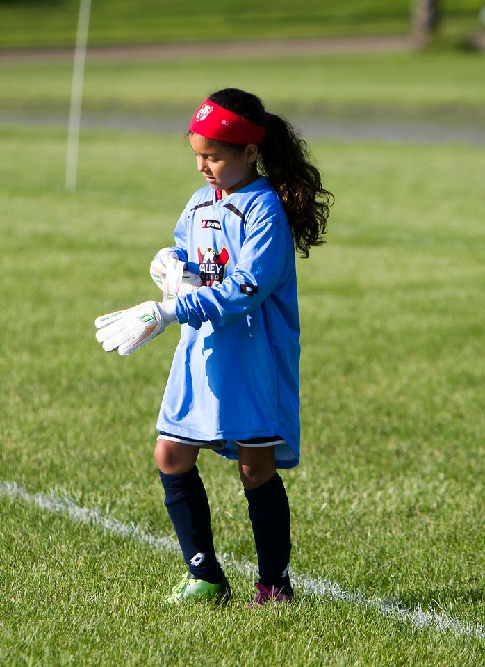 soccer29