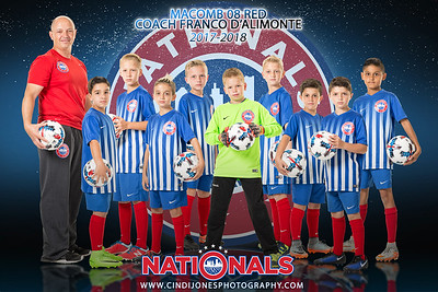 Nationals Reflections Poster NM08BR