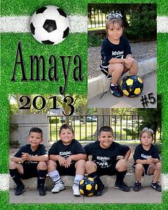 Amaya-MM-whittier-2013-000-Page-1
