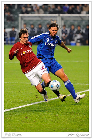 賀歲盃 2009