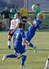 20121111_Hofstra vs Northeastern_495