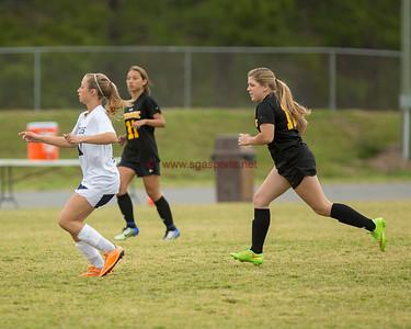 Cook County vs Tiftarea Soccer