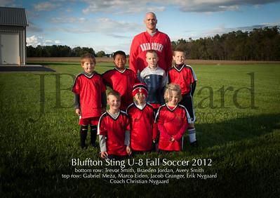U-8 Bluffton Sting Fall 2012