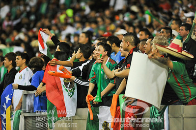Fans of Mexico cheer on their team during Soccer action between Bosnia-Herzegovina and Mexico.  Mexico defeated Bosnia-Herzegovina 2-0 in the game at the Georgia Dome in Atlanta, GA.