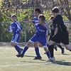Elite Soccer-1017