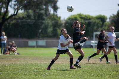 Golden state soccer 2013--11