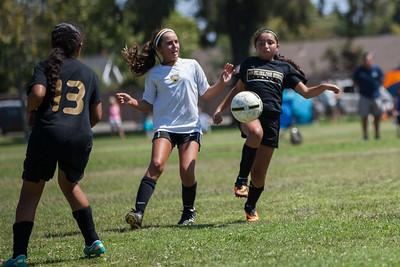 Golden state soccer 2013--5