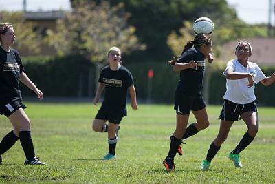 Golden state soccer 2013--9