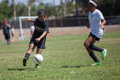 Golden state soccer 2013--12