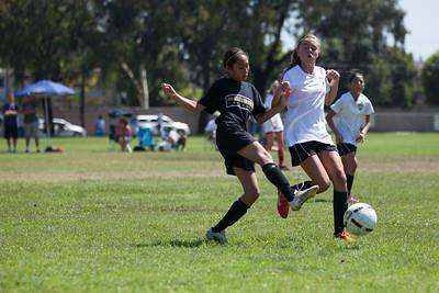 Golden state soccer 2013--8