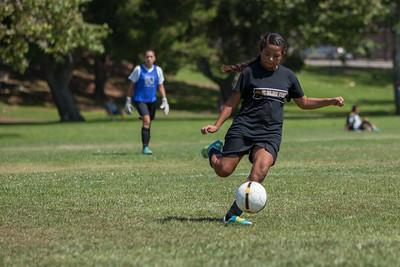 Golden state soccer 2013--10