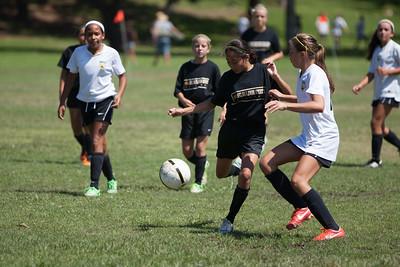 Golden state soccer 2013--6