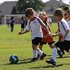 WhiteSnakes-Katy-Soccer-20100925-19450