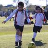 soccer-20101106-22586