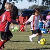 soccer-20101106-22717