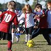 soccer-20101106-22728