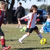 soccer-20101106-22716