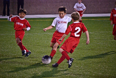 Mustang Soccer 2008 Team Lightning Playoff -11