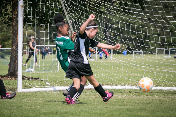 Hailey's Goal