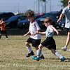 WhiteSnakes-Katy-Soccer-20101016-11411