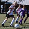 WhiteSnakes-Katy-Soccer-20101009-11015