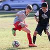 LSA Regular Season U14 - Game 6 - Titans vs. Mineola Texans