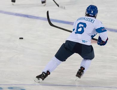 ice hockey Finland-Sweden 15.2.2014