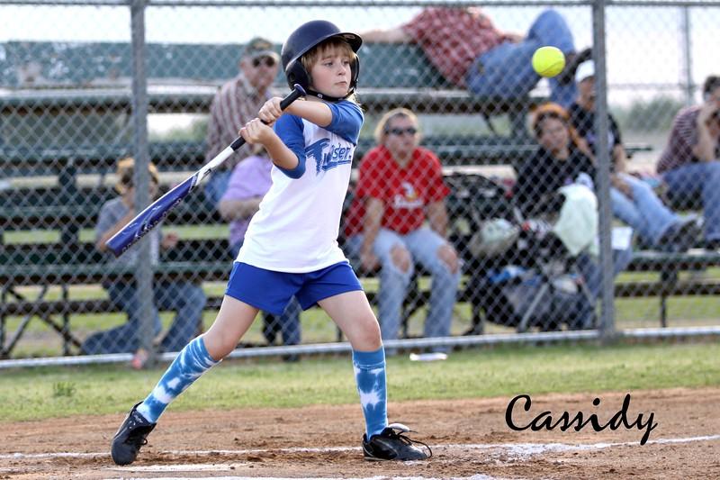 Copy of softball golden s09 206