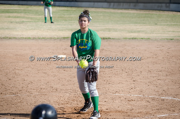 Eagle Rock Softball 2015