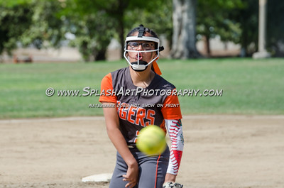 2017 Softball Lincoln vs Bravo 09May2017