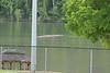 2017-05-09_softball_497