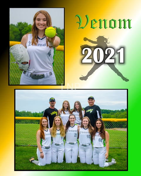 THIS IS AN 8X10 MEMORY MATE.  YOU CAN CHOOSE THE PICTURES YOU WOULD LIKE FOR TOP AND BOTTOM.  I WILL BE RECEIVING A TEAM PHOTO SOON THAT WILL BE ABLE TO BE VIEWED AS WELL.