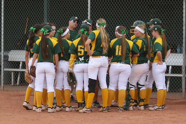 Horizon vs Dobson 04/25/2014