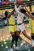 #14 DeSoto forward Amina Muhammad blocks a pass attempt by #11 SGP guard Jahcelyn Hartfield.<br /> South Grand Prairie High girls basketball takes on DeSoto High girls basketball team in the Texas State 6A semi-finals.