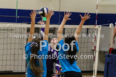9 12 15_SW_Volleyball_Invite_PBSteve_IMG_5990
