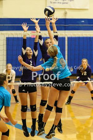 9 12 15_SW_Volleyball_Invite_PBSteve_IMG_5978