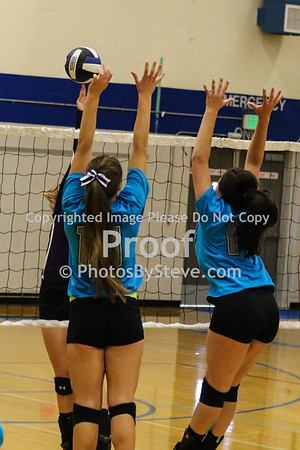 9 12 15_SW_Volleyball_Invite_PBSteve_IMG_5986