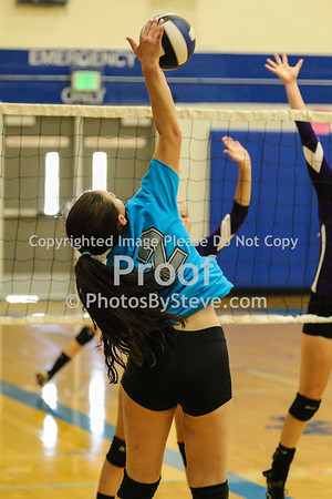 9 12 15_SW_Volleyball_Invite_PBSteve_IMG_5985