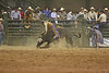 southeast-louisiana-high-school-rodeo-02-23-2007-095