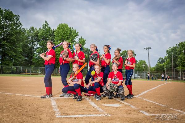 Southern Illinois Falcons Softball Team Photos