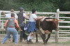 SPYR Bull Riding 09 09 2006 019
