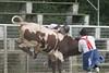 SPYR Bull Riding 09 09 2006 015