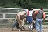 SPYR Bull Riding 09 09 2006 017