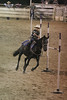 Southern-Pride-Youth-Rodeo-11-05-2005-024