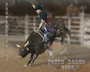 Southern Pride Youth Rodeo 12 10 05  D 230 Collage 8X10