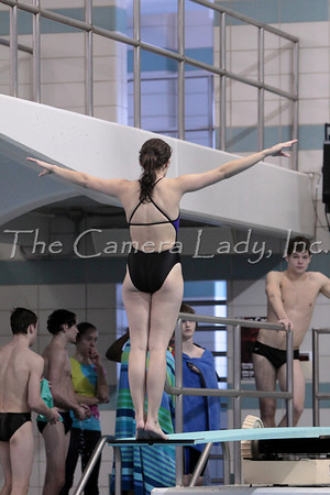 2010 SW Ohio Div 2 Diving Finals 2.17