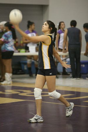 2012 Volleyball Carnival